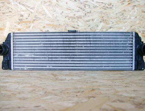 IMGP6355